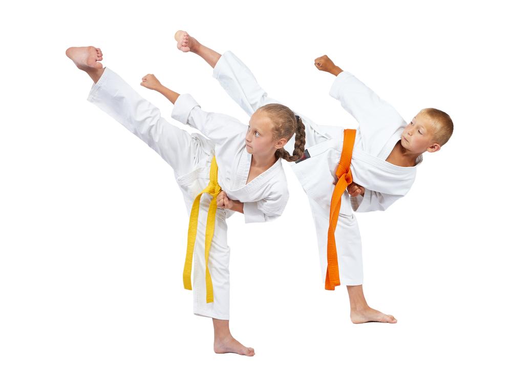Karate Kid Guide